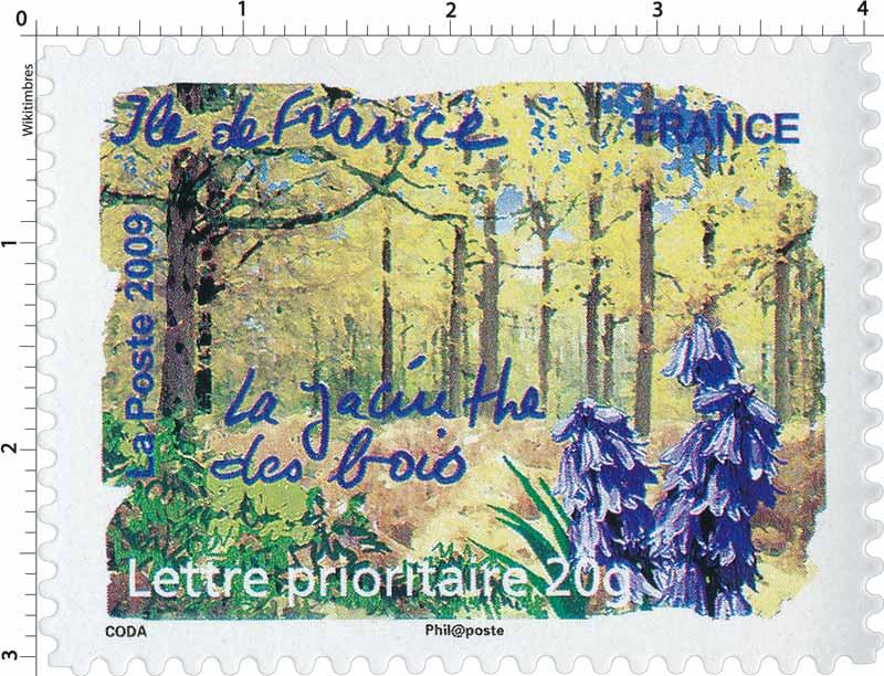 2009 Ile de France La jacinthe des bois
