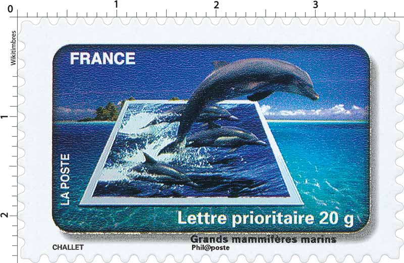 2010 Grands mammifères marins