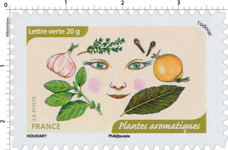 2014 L'odorat : Plantes aromatiques