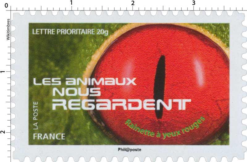 2015 LES ANIMAUX NOUS REGARDENT - Rainette à yeux rouges
