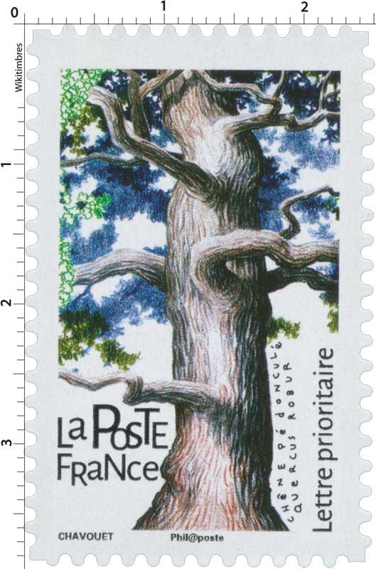 2018 Chêne pédonculé - Quercus robur