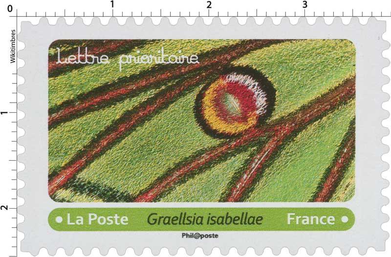 2020 Graellsia isabellae