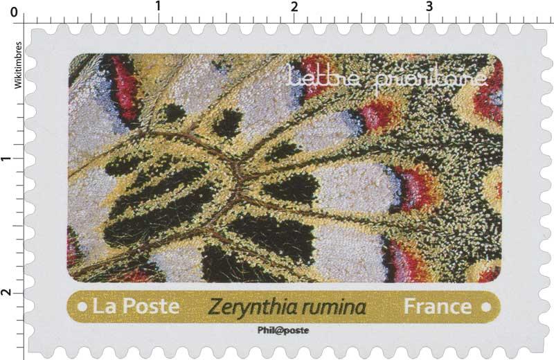 2020 Zerynthia rumina