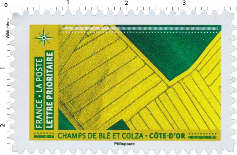 2021 CHAMPS DE BLÉ ET COLZA – CÔTE D'OR