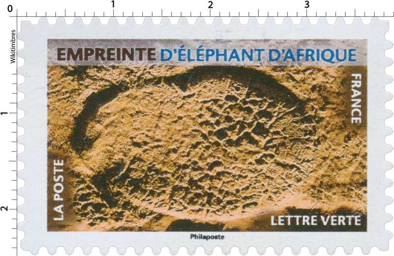 2021 Empreinte d'éléphant d'Afrique