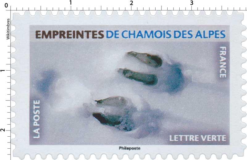 2021 Empreintes de chamois des Alpes