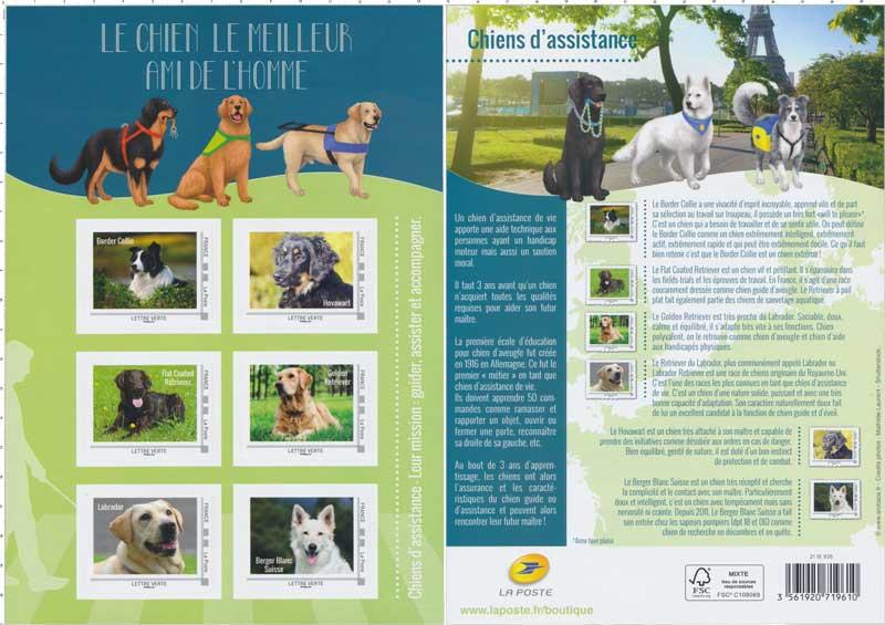 2016 Le chien le meilleur ami de l'homme - chiens d'assistance