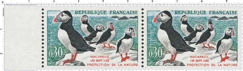 MACAREUX LES SEPT ILES PROTECTION DE LA NATURE