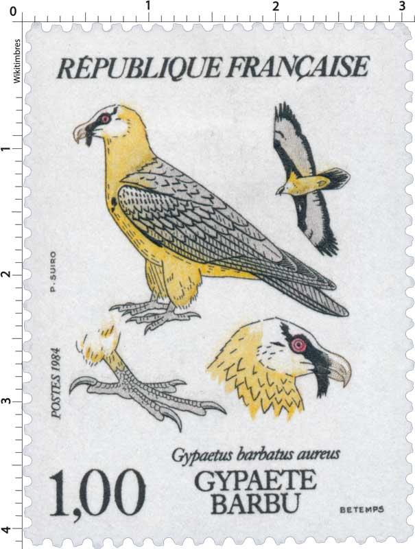1984 GYPAÈTE BARBU gypaetus barbatus aureus