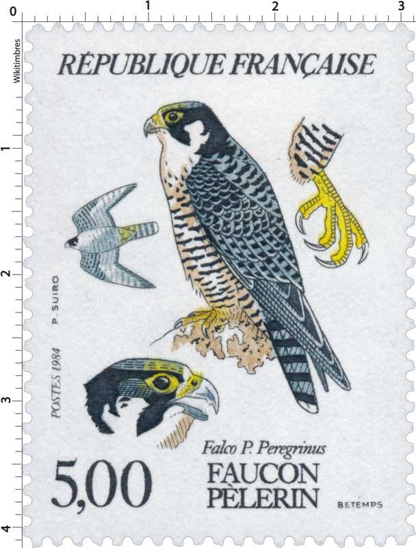 1984 FAUCON PÈLERIN Falco P. Peregrinus