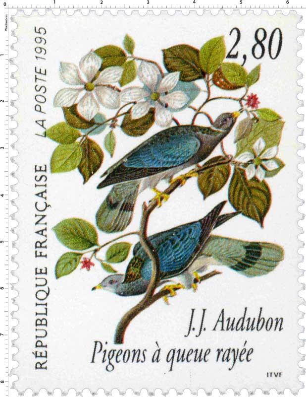 1995 J.J. Audubon Pigeons à queue rayée