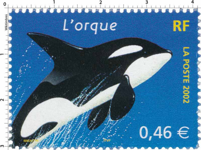 2002 L'orque
