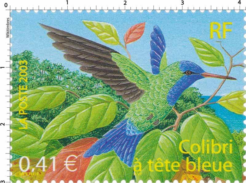 2003 Colibri à tête bleue