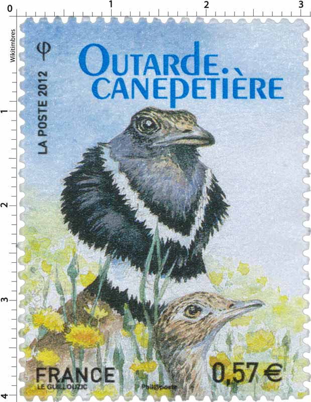 2012 Outarde canepetière
