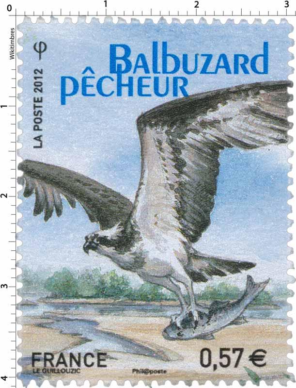 2012 Balbuzard pêcheur