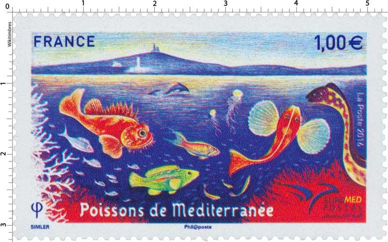 2016 Poissons de Méditerranée