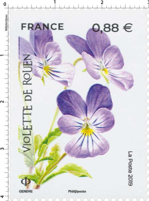 2019 Violette de Rouen