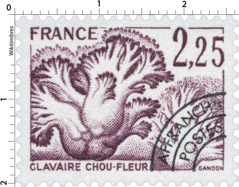 CLAVAIRE CHOU-FLEUR
