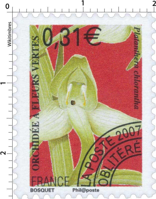 2007 ORCHIDÉE À FLEURS VERTES Platanthera chlorantha