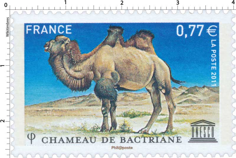 2011 CHAMEAU DE BACTRIANE UNESCO