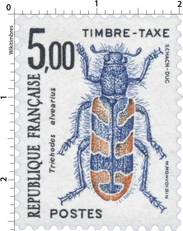 Trichodes alvearius