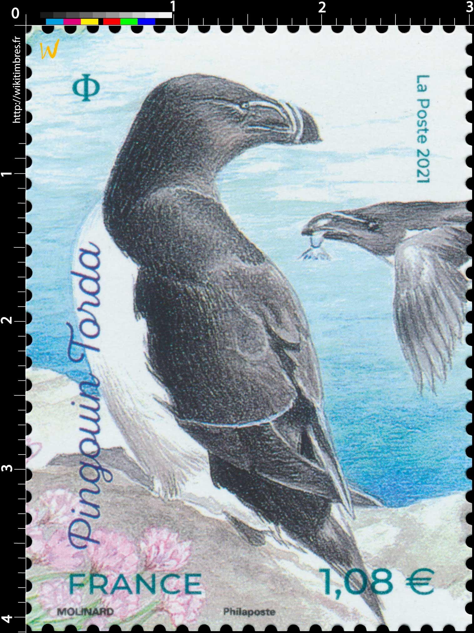 2021 Pingouin Torda