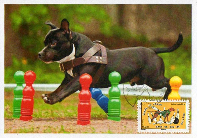 Timbre : 2015 Comme un chien dans un jeu de quilles   WikiTimbres